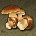 Porcini Mushrooms by Marshall Robinson