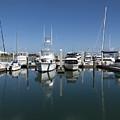 Port Canaveral Florida Usa by Allan  Hughes