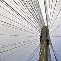 Port Mann Bridge by Pelo Blanco Photo