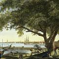 Port Of Philadelphia, 1800 by Granger