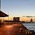 Port Of Rotterdam At Dusk by Carlos Alkmin