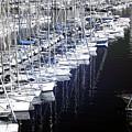 Port Parking by John Rizzuto