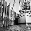Port Royal - Miss Sandra by Scott Hansen