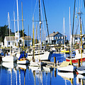 Port Townsend Harbor by Peter French - Printscapes