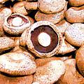 Portabello Mushrooms by Merton Allen
