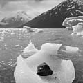 Portage Glacier, Ice Basket by Scott Slone