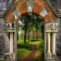 Portal To Portumna Forest by James Truett
