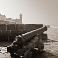 Porthleven Cannon Sepia by Terri Waters