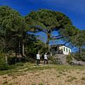 Portofino Trekking Hiking And Walking In The Wood by Enrico Pelos