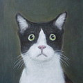 Portrait Of A Cat by Kazumi Whitemoon
