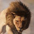 Portrait Of A Lion by Daniel Eskridge