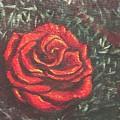 Portrait Of A Rose 4 by Usha Shantharam