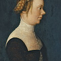 Portrait Of A Woman by Hans Holbein  The Elder