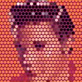 Portrait Of Elvis Presley  by Arun Anekkuna