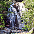 Portrait Of Houston Brook Falls by Sandra Huston