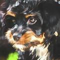 Portrait Of Molly by Teresa Wilson