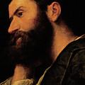 Portrait Of The Poet Pietro Aretino by Alessandro Bonvicino Moretto