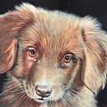 Portrait Of Toby by John Neeve