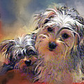 Portrait Of Yorkshire Terrier Puppy Dogs by Susanna Katherine