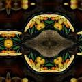 Portrait  Setting Of Fruit Reflection Art by Sheila Mcdonald
