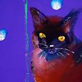 Posh Tom Cat by Charles Stuart
