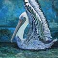 Posing Pelican by Linda Speaker