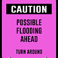 Possible Flooding Ahead by Anne Kitzman