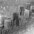 Posts In A Row by Erick Schmidt