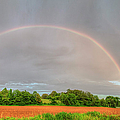 Pot Of Gold  by Larry Braun