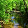 Potamac River In Maryland by Raymond Salani III