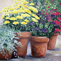 Pots In Bloom by Marsha Young