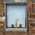 Pots In Window by Patti Schulze