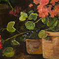 Pots Of Geraniums by Jimmie Trotter