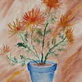Potted Plant - A Watercolor by Eleanor Robinson