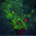 Potted Plant by Jim Vance