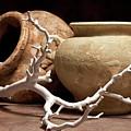 Pottery With Branch II by Tom Mc Nemar
