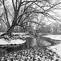 Poudre Black And White by James Steele
