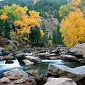 Poudre Gold by Jim Benest