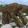 Poulnabrone Dolmen County Clare Ireland by Anne Norskog