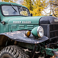 Power Wagon by Lynn Sprowl