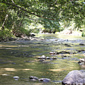 pr 164 - Mountain River by Chris Berry