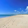Praia De Monte Gordo by Carl Whitfield