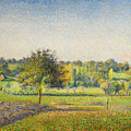 Prairie A Eragny by Camille Pissarro