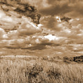 Prairie And Sky by Cris Fulton