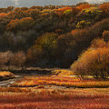 Prairie Autumn Stream No.2 by Bruce Morrison