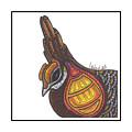 Prairie Chicken #51  by Allie Rowland