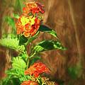 Prairie Flowers by Marshall Barth
