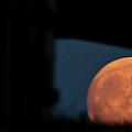 Prairie Full Moon And Barn by Mark Duffy