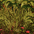 Prairie Grass by Barbara Berney