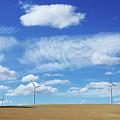 Prairie Landscape Alberta Canada by Bob Christopher